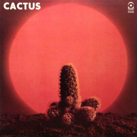 Cactus-Cactus